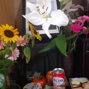 まだ残っているお花は?