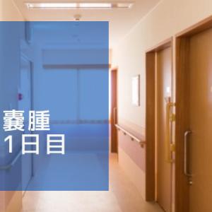 卵巣嚢腫入院1日目 ~病室について~