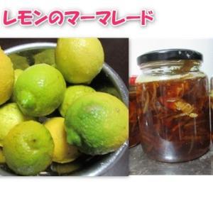 レモンが鈴なりになっていたので、レモンのマーマレードを作ってみる