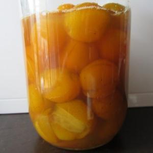初めて庭で取れた金柑の種取り甘煮と成長の様子