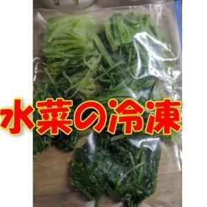 大量の野菜を湯がいて冷凍したり、漬物の下処理をする