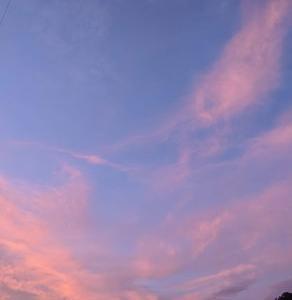 「夕焼けがきれいだった」とお米の話