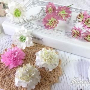 【紙のお花】新しいお花 アストランティア