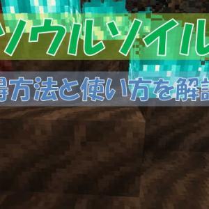 【マイクラ】「ソウルソイル」の入手方法と使い方!青い炎を点けることができる
