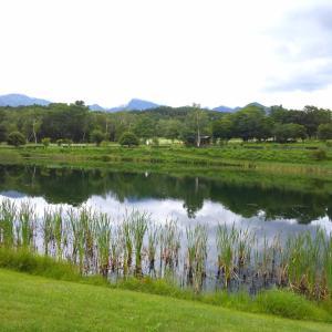 久しぶりに八ヶ岳自然文化園へ。