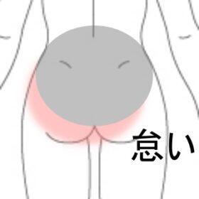 腰から臀部にかけて怠い 室蘭登別すのさき鍼灸整骨院 症例報告