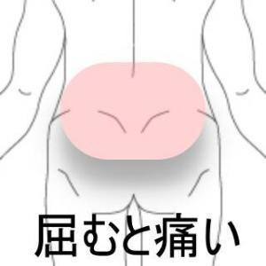 打撲による腰痛 室蘭登別すのさき鍼灸整骨院 症例報告