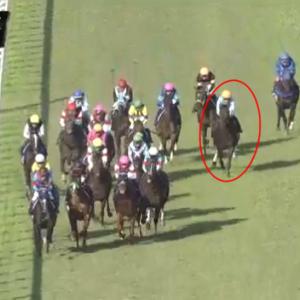 【祝!】デアリングタクトの無敗牝馬三冠達成に曽祖父の影を見た件。