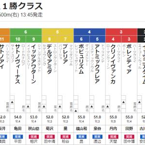 【一口馬主】ポレンティアちゃん、3枠3番から新馬と同舞台での2勝目を狙う!
