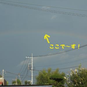 虹を見ると・・・