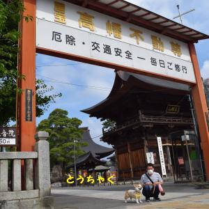 高幡不動尊に行って来たよ。