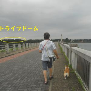 狭山湖 プチ散歩