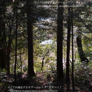 これまで撮りためた写真-その184【8年前の今日(2012年4月2日)】(光と影)