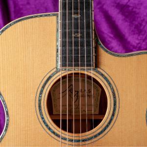 Ayersのオーケストラモデルのギター