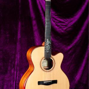 まもなく限定一本のAyersギターが販売されます
