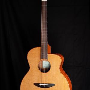 週末に大阪でBadenギターの試奏会が開催されます