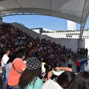 2019、2020年末年始 フィリピン・セブ旅行(2日目-14)Cebu Ocean Park:Amphitheatre(野外円形劇場)