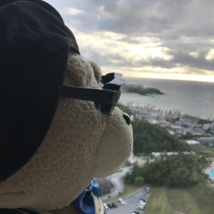 テッド:無事にオーストラリアへ飛び立つの巻