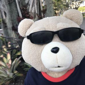 テッド:クィーンのブライアン・メイからインスタのダイレクトメッセージが来た!!!②