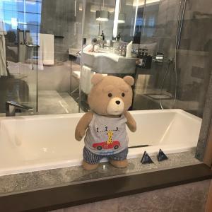テッド:超高級ホテルでの出来事②