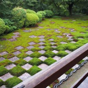 またまた京都へ行ってました