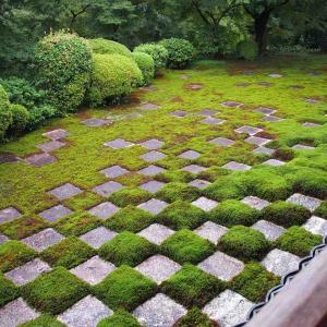 ブライス着物で京都さんぽ(東福寺)