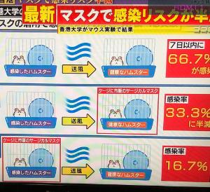 平安ステークス 予想(中央競馬予想・データ分析・傾向)