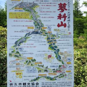 ラジオNIKKEI賞 予想(中央競馬予想・データ分析・傾向)