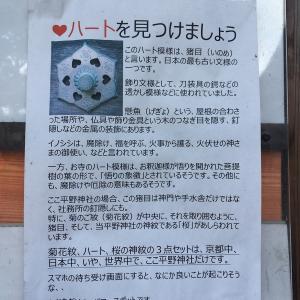 平野神社に寄り道です
