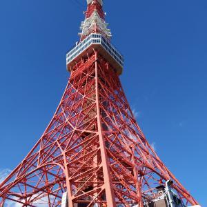 東京タワーから増上寺、そして、旧芝離宮恩賜庭園へ散歩。
