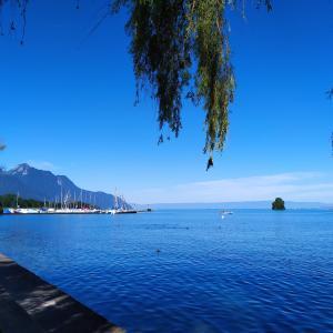 レマン湖自然保護区のハイキング~スイスから、その1