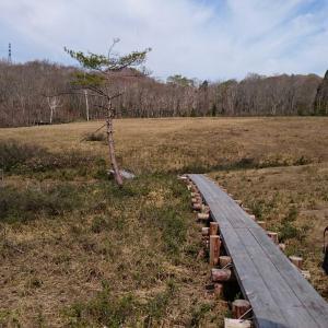 No.35  玉原湿原 と 尼ヶ禿山  2018.4.30