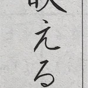 【ペンの光】5月号の結果