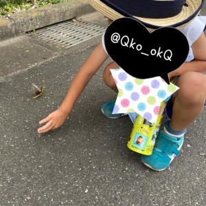 日記■9/18  幼稚園とユニクロとPS5 4y0m4d(48m4d)