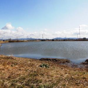 県下最大の天然湖沼・油ヶ淵/愛知県安城市移動