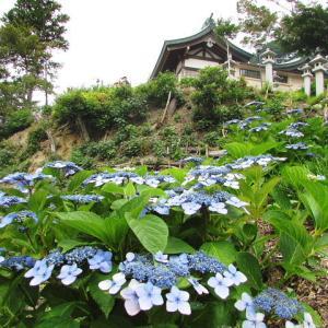 里山で移動運用/愛知県東郷町移動