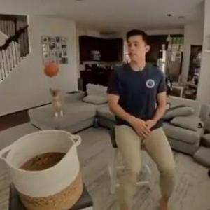 飼い主が投げたボールを当てて、バスケットに入れるコーギーが見事