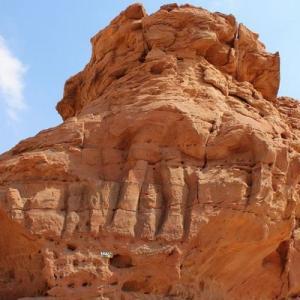 サウジアラビアで発見されたラクダのレリーフ、7000年前のものと推定