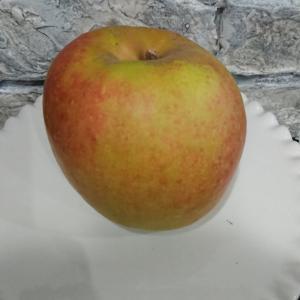 リンゴ色々