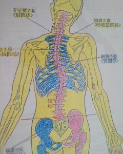 整骨院通いで電気治療とマッサージをしていてもぎっくり腰になった例