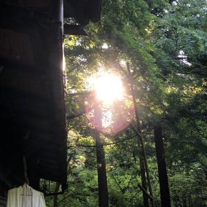 人は光をみつけるために
