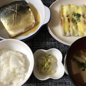 今日の晩御飯*鯖の煮付け*