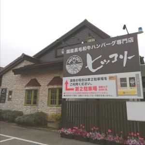 【豊田市ランチ】ヒッコリー浄水でジャーマンハンバーグを食べてきました!