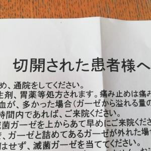 豊田市で粉瘤の再手術。かかった時間や費用は?