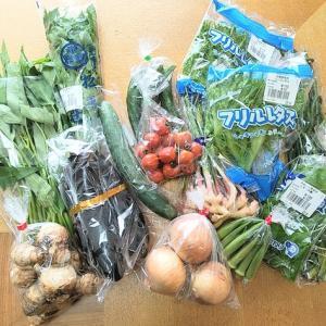 最近は野菜がとっても高いですね…産直プラザでお値打ちな野菜を買ってきました