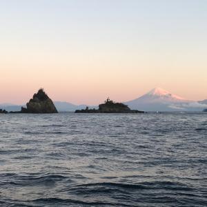 西伊豆 田子・カツオ島 2019/11/30