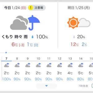 2021年1月24日(日)の朝は冷たーい雨