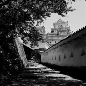 初夏の姫路城見学