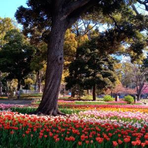 春・ガーデンネックレス横浜