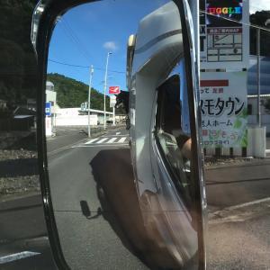 箱乗りワンコ(´ω`)